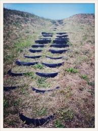 steps / Forks, WA / May 31