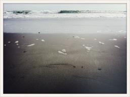 wave / Ocean Shores, WA / June 1