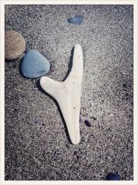stones / wood / sand / Ruby Beach, WA / May 31