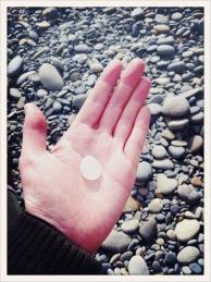 glass / palm / Ruby Beach, WA / May 31
